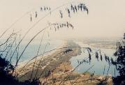 Immagine del Lago di Paola e duna costiera subito a nord del Circeo (Lazio Meridionale)